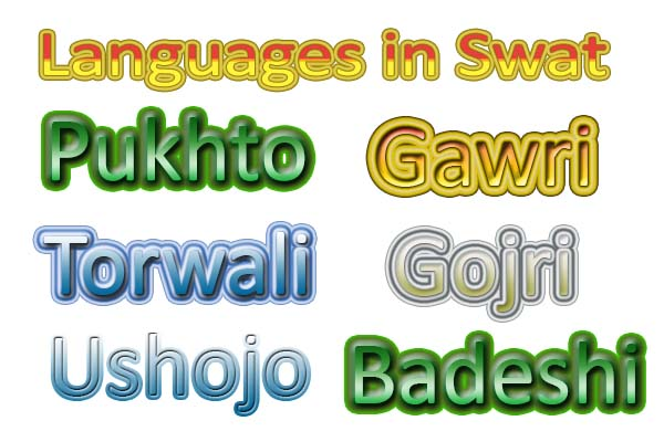 Linguists urge government to promote Swati languages
